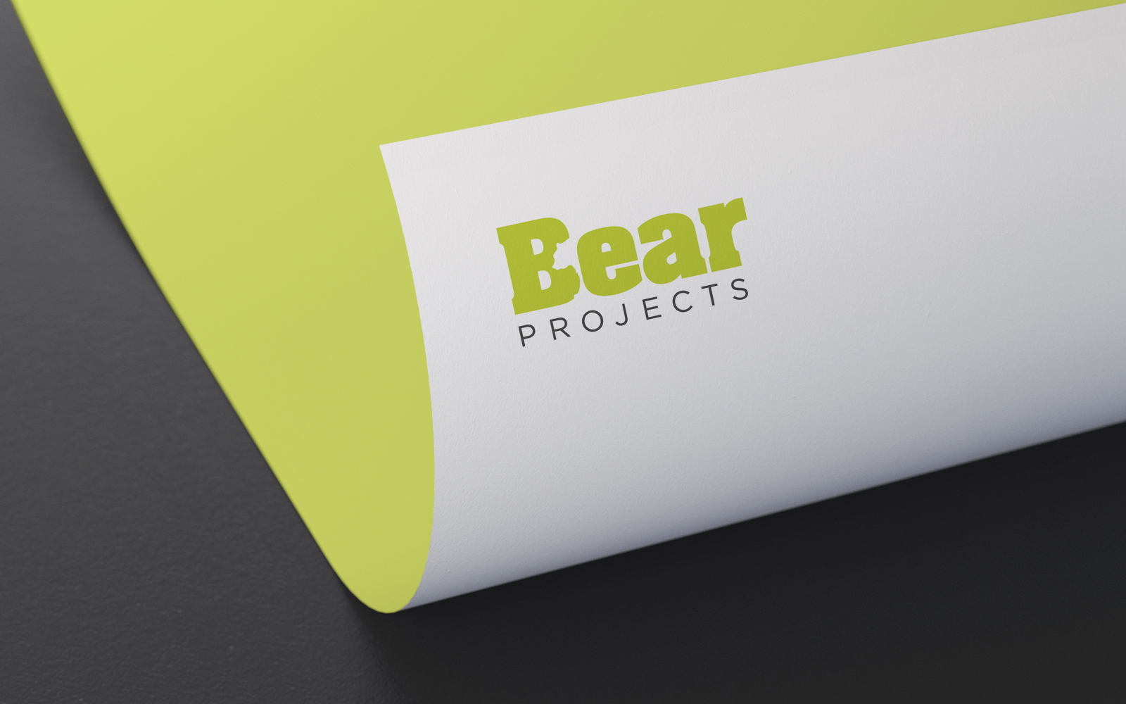 Bear Projects